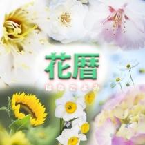 花暦 グループのロゴ