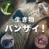 生き物バンザイ! グループのロゴ
