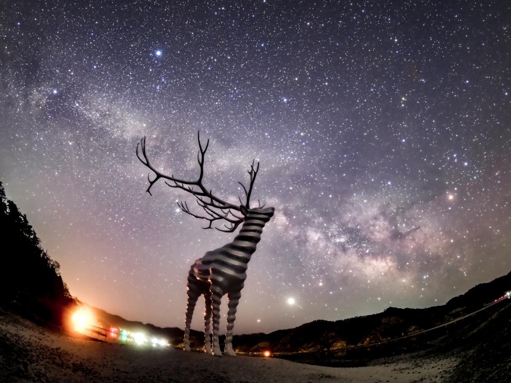 星づく夜の旅路